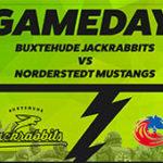 Zweites Heimspiel gegen die Norderstedt Mustangs